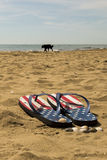 Fracasos de tirón en la playa Fotos de archivo