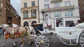 Fracht z białymi koniami i złotymi klamrami majestically kłębi wokoło zbiory wideo