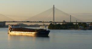 Frachtschiff am Anker an der Kabelbrücke stock video