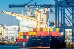 Frachtschiff Fesco Vladimir Lizenzfreies Stockbild
