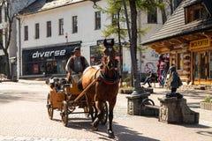 Frachty z koniami dla turystów na ulicie w Zakopane zdjęcia royalty free