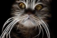 Fractal εικόνα μιας ριγωτής εσωτερικής γάτας ελεύθερη απεικόνιση δικαιώματος