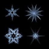 fractal νιφάδων χιόνι Στοκ φωτογραφία με δικαίωμα ελεύθερης χρήσης