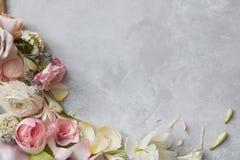 fractal λουλουδιών απεικόνιση πλαισίων Στοκ Εικόνες