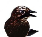 Fractal πουλί Στοκ εικόνα με δικαίωμα ελεύθερης χρήσης