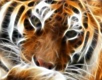 fractal τίγρη Στοκ Φωτογραφίες