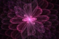 Fractal φαντασία λουλουδιών Στοκ Φωτογραφία