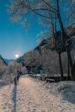 αφηρημένος fractal χειμώνας νύχτας εικόνας Στοκ εικόνα με δικαίωμα ελεύθερης χρήσης