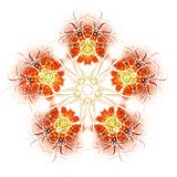 Fractal abstract. Flowers (colored background royalty free illustration