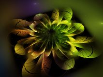 Fractal abstract flower beautiful fantasy color concept decoration fantasy effect dark wallpaper blossom unique dynamic. Fractal abstract flower beautiful Stock Photo