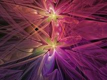 Fractal abstract patroon, mooie grafische de bloem van de mandewerk creatieve krul kleurrijke gevoelige reclame Royalty-vrije Stock Fotografie