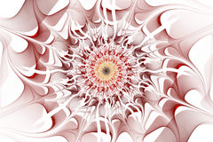 Fractal - abstraction in red colors. On white background Royalty Free Stock Photo