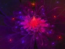 Fractal fractal abstrakcjonistycznego abstrakcjonistycznego szablonu kwiatu wibrujący cyfrowy skład, tajemniczy Fotografia Stock