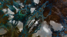 Fractal arboreal structures (three dimensional fractal designed by fractal-generator software) Royalty Free Stock Photo