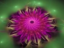 Fractal bloem abstract effect, het decor toekomstige artistieke kleurrijk van de ontwerpbanner, dynamische achtergrond, Stock Foto's