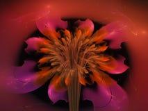 Fractal bloem abstract effect, mooie het overladen decor toekomstige artistieke kleurrijk van het behang creatieve ontwerp, dynam Royalty-vrije Stock Afbeeldingen