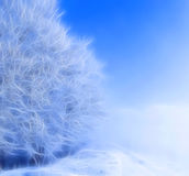 Fractal brilliant white fibers Royalty Free Stock Image