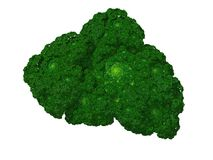 Fractal Broccoli Stock Image