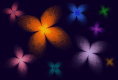 Fractal butterflies in many colors Royalty Free Stock Images
