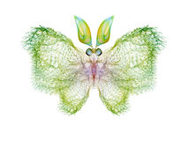 Fractal Butterfly Royalty Free Stock Photos