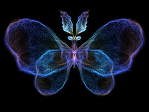 Fractal Butterfly Stock Image