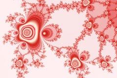 Fractal de rozen, sieren rood wit voor huwelijksuitnodiging, kaart of banner Royalty-vrije Stock Fotografie