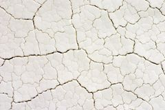 Fractal drying cracks on white surface, close-up Royalty Free Stock Image