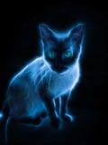 Fractal effect Cat Portrait. Fractal glow effect of a Cat Royalty Free Stock Images