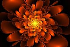 Fractal fantazi kwiat Obrazy Stock