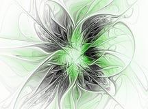 Fractal flower. Computer generation, image Royalty Free Stock Image