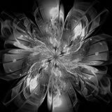 Fractal flower Royalty Free Stock Photo