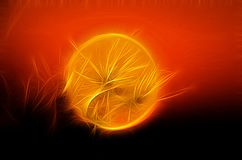 Fractal image of seeds on the background of the red ball of the setting sun stock illustration