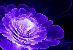 Fractal kwiat Zdjęcia Stock