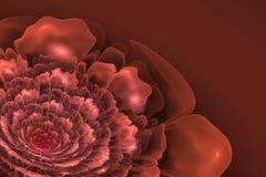 Fractal kwiat w cieniach menchie Fotografia Royalty Free