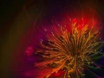 fractal kwiatu ciemnej przestrzeni abstrakcjonistycznego pięknego okwitnięcia unikalny dynamiczny Fotografia Stock
