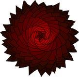 Fractal red flower. Vector rose. Abstract star design element. Stock Images