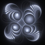 Fractal shell. Glowing fractal shells over black Royalty Free Stock Image