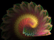 Fractal shell Royalty Free Stock Images