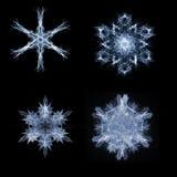 Fractal sneeuwvlokken Stock Afbeeldingen