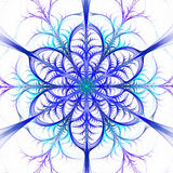 Fractal snowflake Royalty Free Stock Images