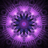 Fractal snowflake or flower in blue, violet and lilac colors Stock Photos