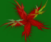 A fractal star of feather. An abstract star feather on black background Stock Photos