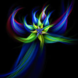 Fractal star flower. Abstract fractal resembling a star flower Stock Photo
