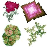 Fractal structures. Illustrations of fractal structures isolated on white Royalty Free Stock Images