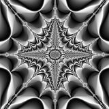 Fractal surreal black white flower star. Fractal surreal black white flower Stock Photography