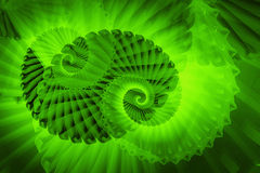 Fractal swirls. Abstract background fractal swirls in green Royalty Free Stock Photography
