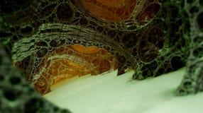 Fractal trabeculars struktury (trójwymiarowy fractal projektujący generatoru oprogramowaniem) Fotografia Stock