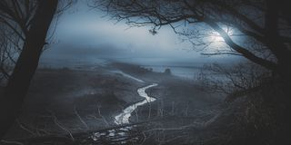 Fractal-when you feel the curves belong to a system. A shallow pond and a creek in the foggy moonlight from Hungary Royalty Free Stock Images