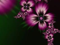 Fractalbild mit Blumen Für Ihren Text fantastische Schuhsohle in allen Regenbogenfarben Stockbilder