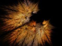 Fractals abstrakta höstsidor, på en svart bakgrund Fotografering för Bildbyråer